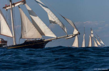 Start regat w Halifax / fot. Valery Vasilevsky / Sail Training International
