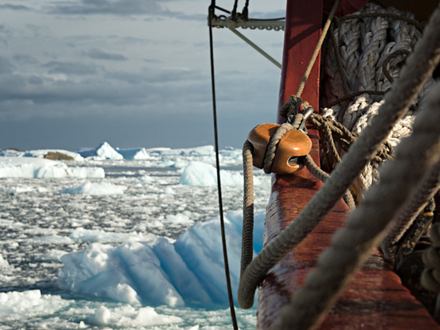 Europa w krainie lodu - w Zatoce Collinsa